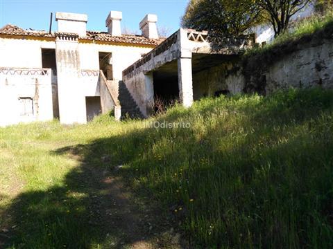 Quinta T6+2